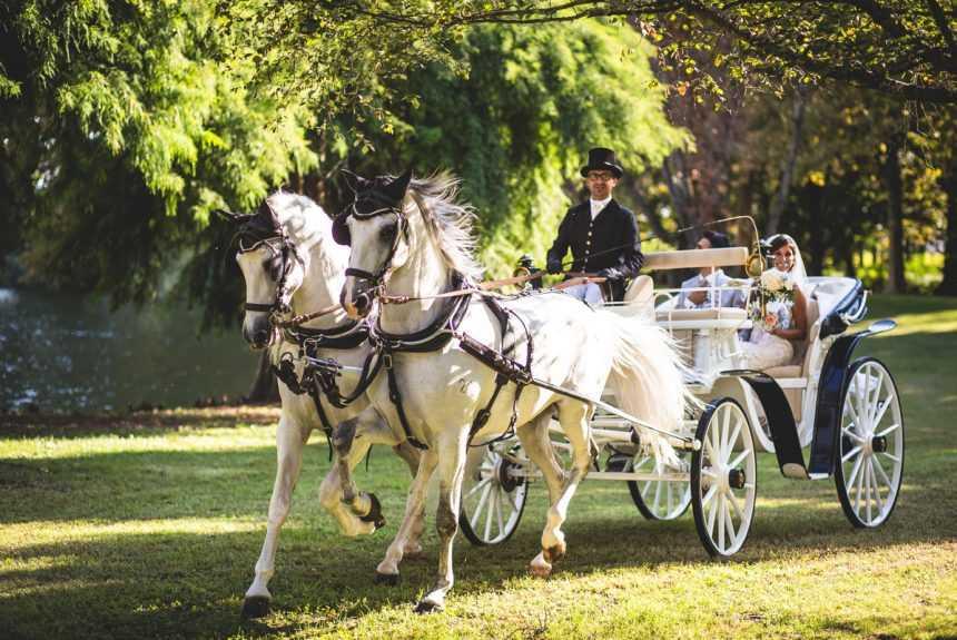 Cascina-Boscaccio-carrozza-cavallo-2